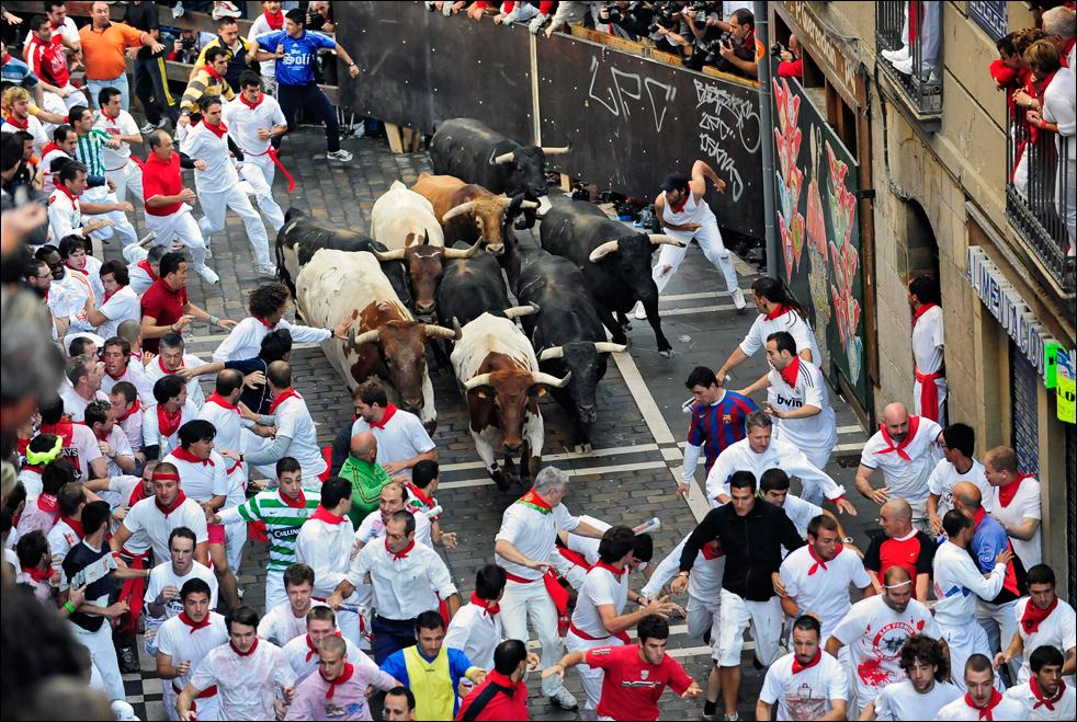 bulls08